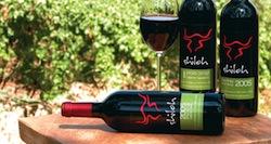 photo - Shiloh wine