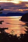 photo - There's immense beauty along Chuckanut Drive whatever time of day you choose to meander those winding roads.