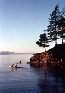 photo - Kayaking in Wildcat Cove provides a close-up view of the life in the beautiful bay.