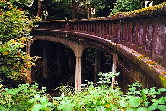 photo - There are continuous canopies of trees shading the bridges on Chuckanut Drive, a lush landscape of forest and mountain.