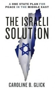image - The Israeli Solution cover