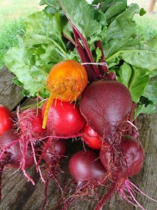 photo - Beets also represent the hope that Israel's enemies will be kept away