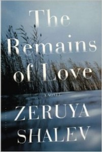 image - The Remains of Love book cover