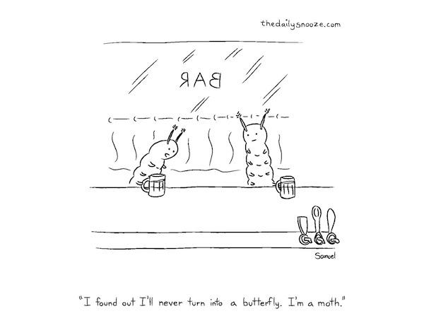 This week's cartoon … Dec. 5/14