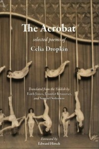 image - The Acrobat book cover