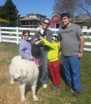 photo - From left to right, are Naomi, Michelle and Max Dodek with Gil Lewinsky in Abbotsford. Michelle is holding a one-day-old Jacob sheep