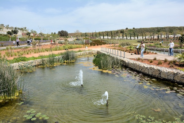 photo - The Tel Hirya reclamation project and urban park, April 2015.