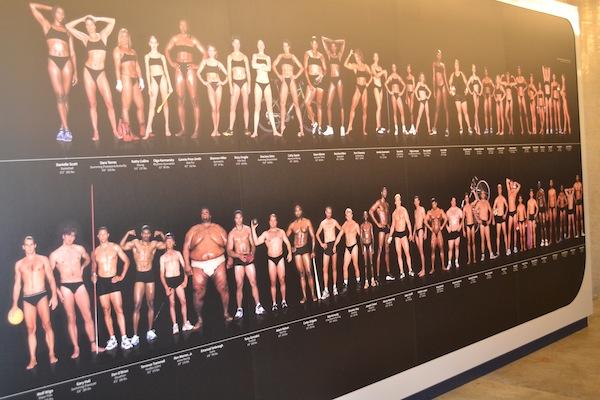 photo - Olympic athletes