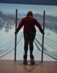 photo - Try your hand at ski jumping in one of ROX's five simulators