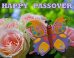 image - Passover postcard with a fluttering butterfly by Lana Lagoonca