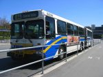 Transit is a Jewish issue