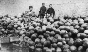 photo - Watermelons, undated
