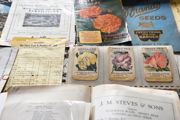 photo - Harold Steves' collection of heirloom seeds ties to environmental history and issues of sustainability and food security