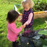 Preschool widens catchment