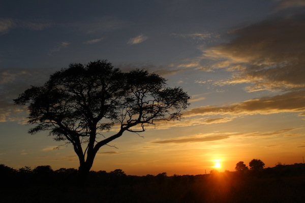 photo - The sun sets on a safari in Zimbabwe's Hwange National Park