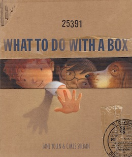 book cover - What to do with a Box