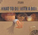 book cover - What to do with a Box cropped