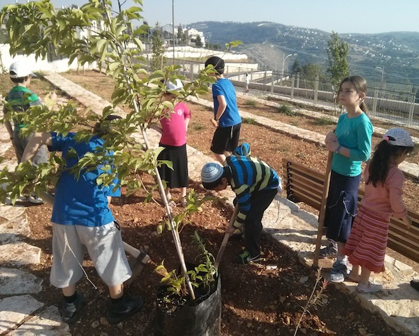 Making Israeli cities bloom