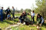 photo - Orphans from the IDF Widows and Orphans organization plant olive trees in the Givat Koah forest along with Tami Shelach, IDFWO chair, herself an IDF widow