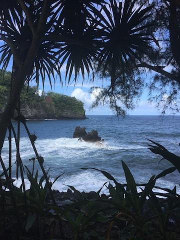 photo - Hawaii - ocean