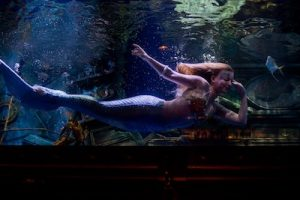 photo - Rachel's underwater job at the Dive Bar in Sacramento, Calif., helps her deal with a family tragedy