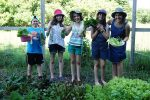 photo - Friends at Camp Shomria show off the fresh vegetables they picked in the camp's garden. The produce was used to make a salad for one of the meals