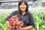 Farming as social enterprise
