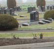 Cemetery improvements