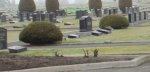 photo - fromcemeteryboard.com