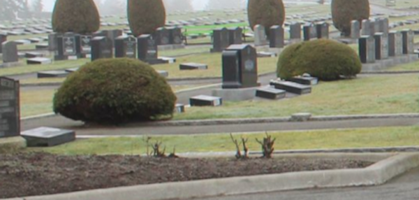 Cemetery improvements