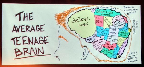 Understanding a teen's brain
