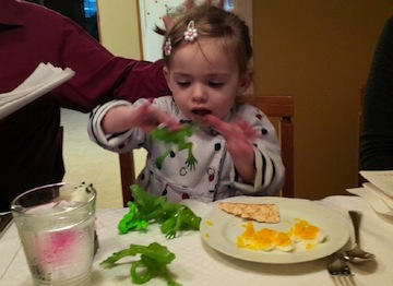 photo - Fae at Passover