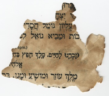 photo - A fragment of a Torah scroll found on the street in Berlin following Kristallnacht, in 1938, part of the VHEC's permanent collection and the exhibit In Focus: The Holocaust Through the VHEC Collection