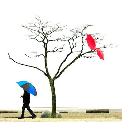 """photo - """"Umbrellas"""" by Ivor Levin"""