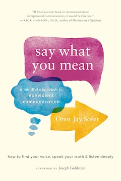 image - Say What You Mean book cover