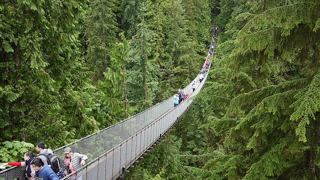 photo - Capilano Park suspension bridge
