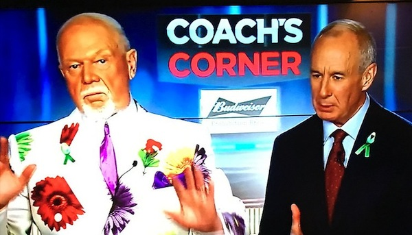photo - Don Cherry and Ron Maclean on screen, in 2018