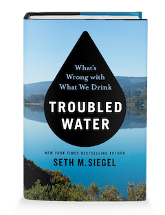 image - Troubled Water book cover