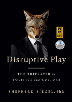 image - Disruptive Play book cover