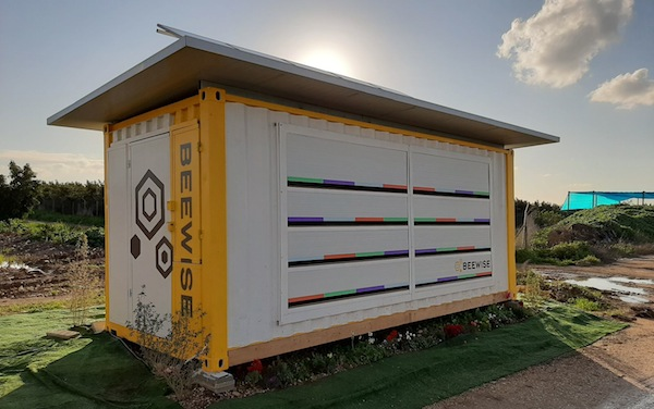 photo - Beewise wants to replace traditional, wooden hives with high-tech, autonomous ones