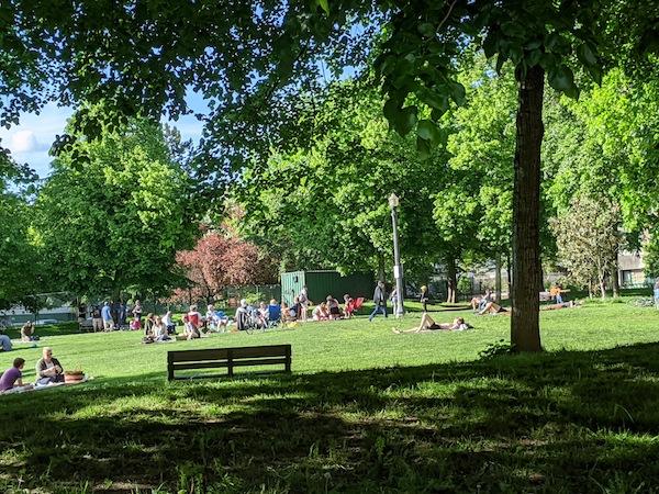 photo - Residents enjoy the warm sun in Nelson Park