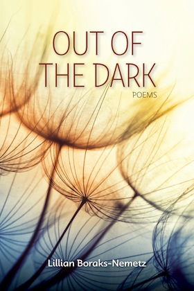 image - Out of the Dark book cover