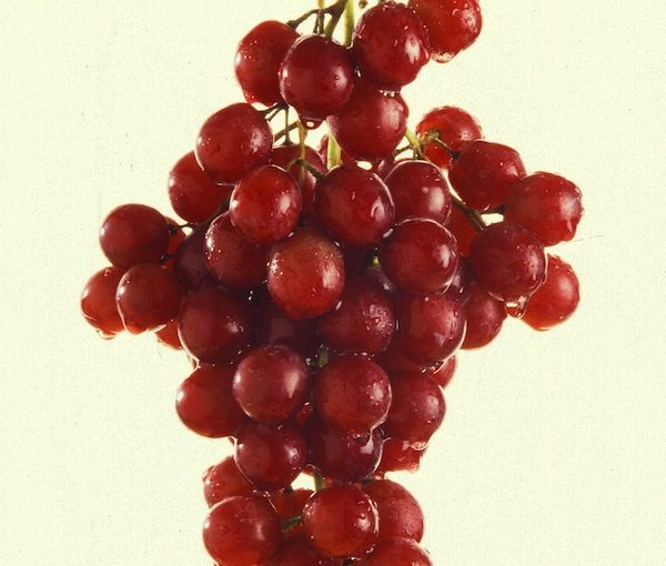 photo - grapes