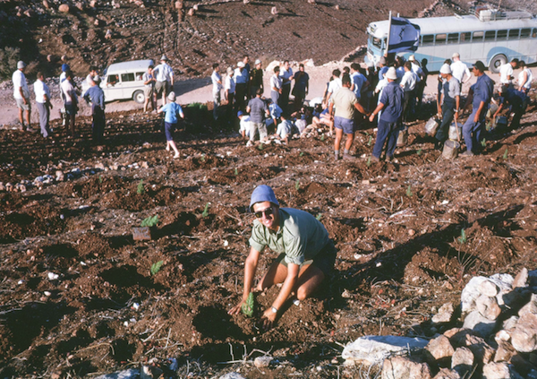 photo - Panel speaker Dr. Arthur Dodek in 1963, planting a Jewish National Fund tree as part of the second World Jewish Youth Convention. Dodek was in Israel representing the Student Zionist Organization of North America