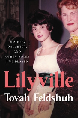 image - Lilyville book cover