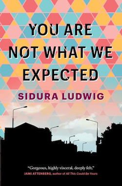 image - You Are Not What We Expected book cover