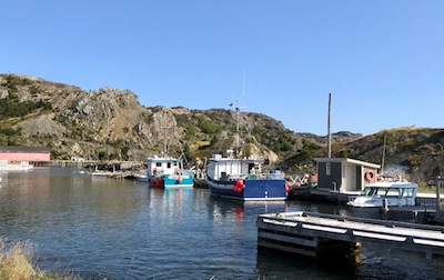 photo - Brigus is a small fishing community located in Conception Bay